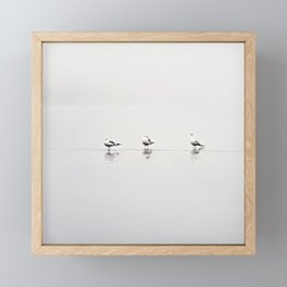 seagulls Framed Mini Art Print