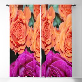 Orange and White Rose w/Pink Tips Blackout Curtain