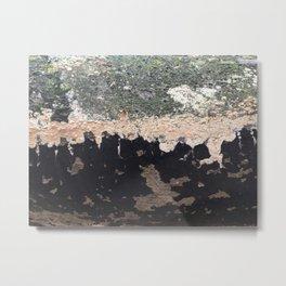 Bifurcation Metal Print