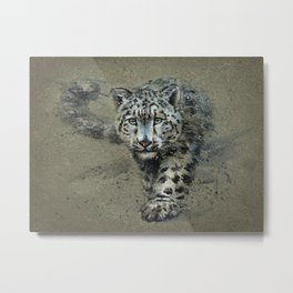 Snow leopard background Metal Print