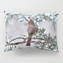 Snow on His Back (Northern Cardinal) Pillow Sham