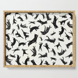 Shadow Cats Space Serving Tray