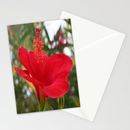 Soft Red Hibiscus With Natural Garden Background Stationery Cards