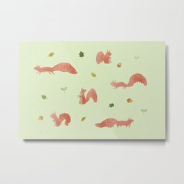 Red Squirrels Metal Print