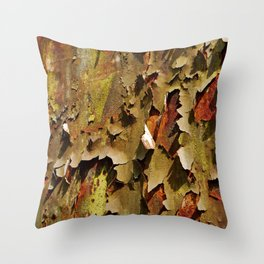 Rusty Stuff (~ Colours of Transience ~ ) II Throw Pillow
