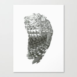 Owl Wing Canvas Print