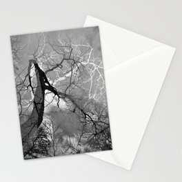 364 | austin Stationery Cards