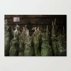 Surface Tension: Christmas Trees Canvas Print