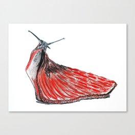 Slug Canvas Print