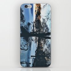 winter in new york iPhone & iPod Skin