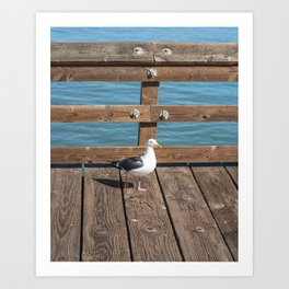 San Buenaventura State Beach II Art Print