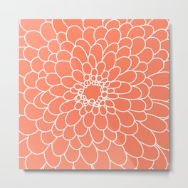Coral Chrysanth Metal Print