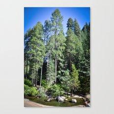 Tall Beauty Canvas Print