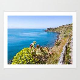 Nature vegetation above the sea nature reserve marine tranquil scene natural Art Print