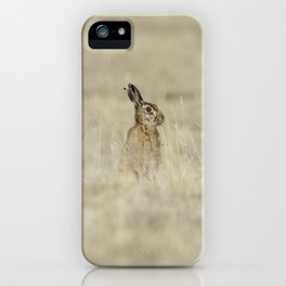 Brown hare iPhone Case