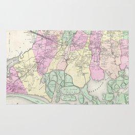 Vintage Map of South Hempstead Long Island (1873) Rug
