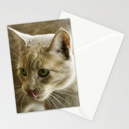 Little Lion Stationery Cards