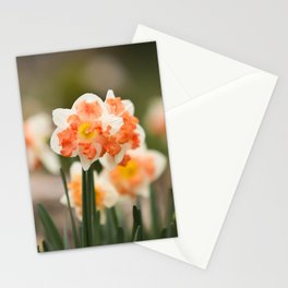 Easter Love Stationery Cards