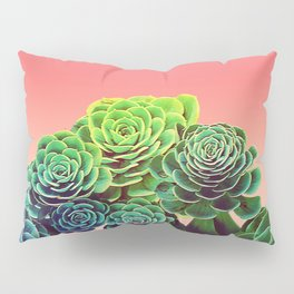 Summer Succulents Pillow Sham