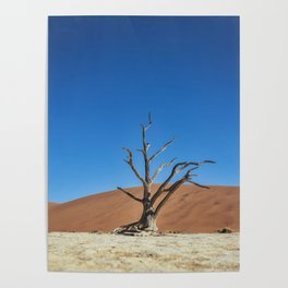 Lone Dead desert Tree Poster