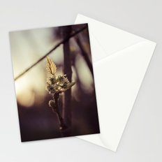 Raspberry sprout Stationery Cards