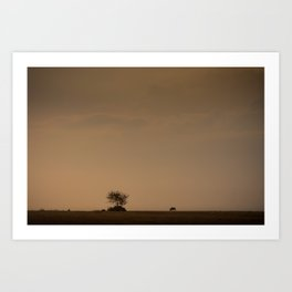 Lone wildebeest grazing in South Africa at sunset Art Print