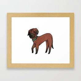 Maki the Rhodesian Ridgeback Framed Art Print