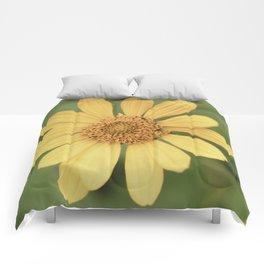 Beautiful Yellow Vintage Flower Comforters
