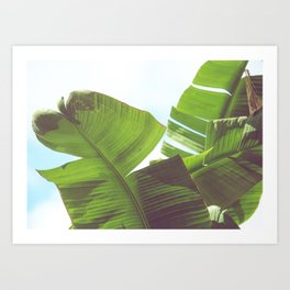 Cabana Life, No. 1 Art Print