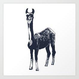 Llama Art Art Print