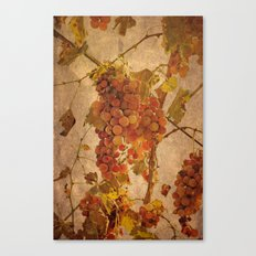The most noble and challenging of fruits Canvas Print