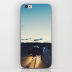 Bison in the Headlights iPhone Skin