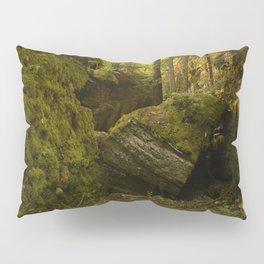 Believe Pillow Sham