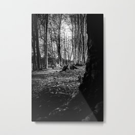 Moss Covered Tree Stump Hiking Path Forest bw Metal Print
