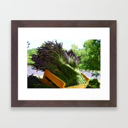Lavender Bunches in Provence France Framed Art Print