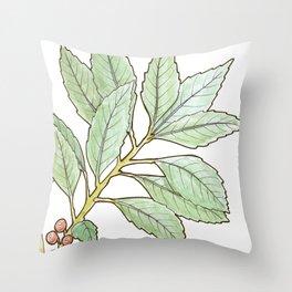 tea botanicals | Yerba Mate // South American herbal Throw Pillow