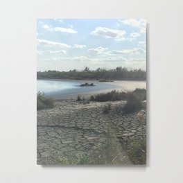 florida desert-like view Metal Print