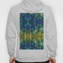 Geometric Spectrum Hoody