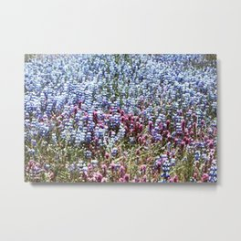 Flower fields Metal Print