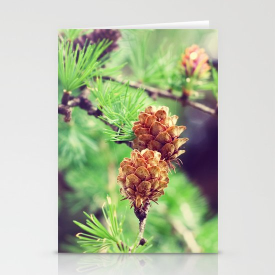 Pinecones Stationery Cards