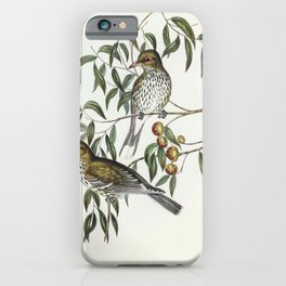 New South Wales Oriole (Oriolus viridis) illustrated by Elizabeth Gould (1804-1841) for John Goulds iPhone Case