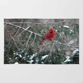 Winter Cardinal Rug