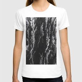 closeup leaf texture abstract background in black and white T-shirt