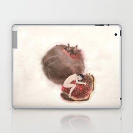 Promergrade Laptop & iPad Skin