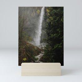 Latourell Falls, Oregon Mini Art Print