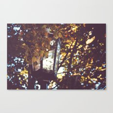 autumn leaves, lamp post Canvas Print