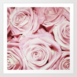 Beautiful bed of pink roses - Floral Rose Flowers Art Print
