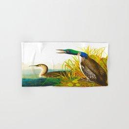 Great Norther Diver or Loon John James Audubon Scientific Birds Of America Illustration Hand & Bath Towel