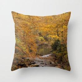 Fall is Golden Throw Pillow