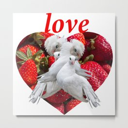 Love and Dove Metal Print